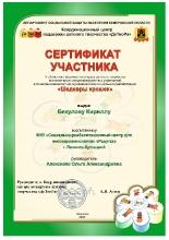 Достижения_3