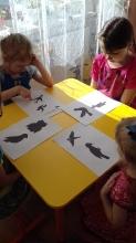 Международный день птиц_1