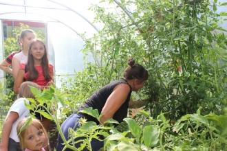 Во саду ли, в огороде собрались большой семьей_1