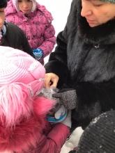 Помоги птице зимой!_6