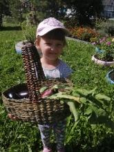 Во саду ли, в огороде собрались большой семьей_2
